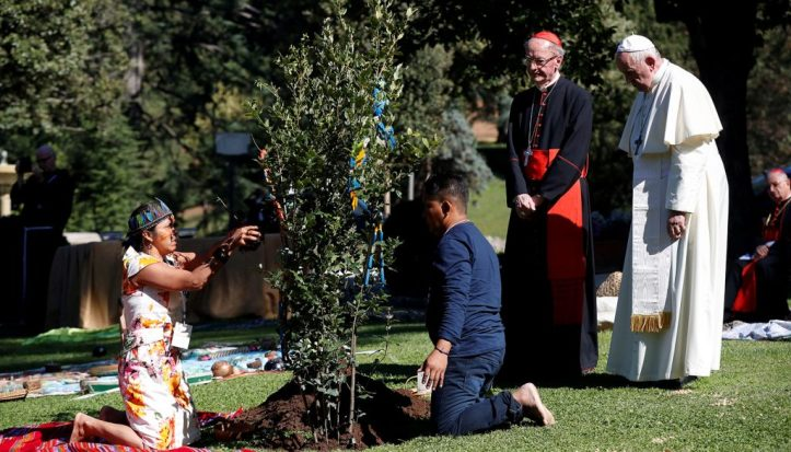 20191004t0804-578-cns-pope-tree-assisi-1024x585-1-1